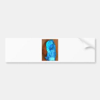 teenage attraction bumper sticker
