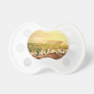 Teenage Lions Watch From A Hill Pacifier
