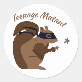 Teenage Mutant Sticker