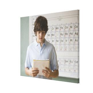 Teenaged boy giving speech in science class canvas print