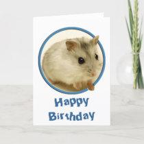 Teeny Hamster Birthday Card