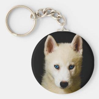 Tehya - husky siberiano llaveros personalizados