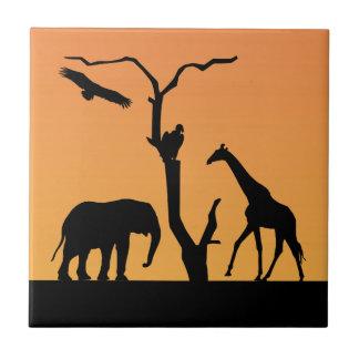 Teja africana de la silueta de la puesta del sol d