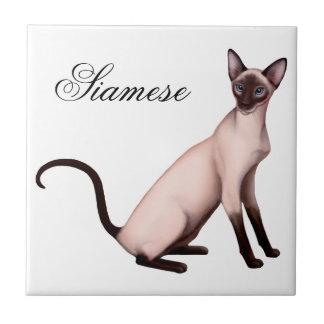 Teja amistosa adaptable del gato siamés