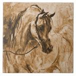 Teja árabe del caballo