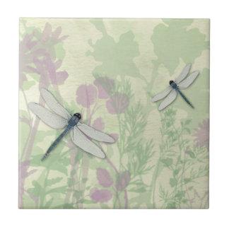 Teja azul de las libélulas