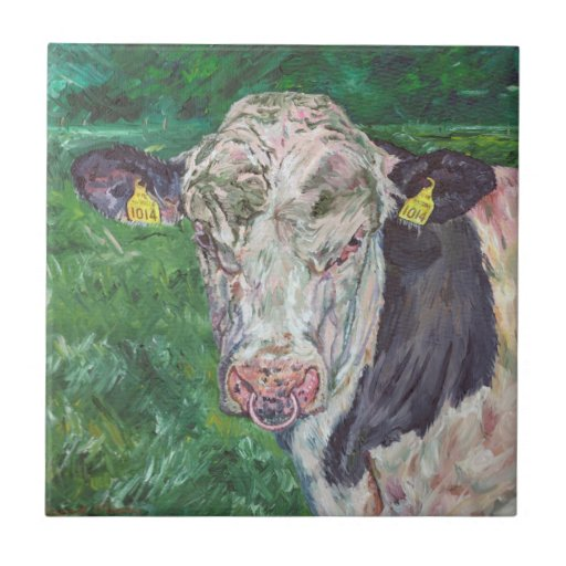 Teja - Bull frisia irlandesa