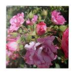 Teja color de rosa rosada