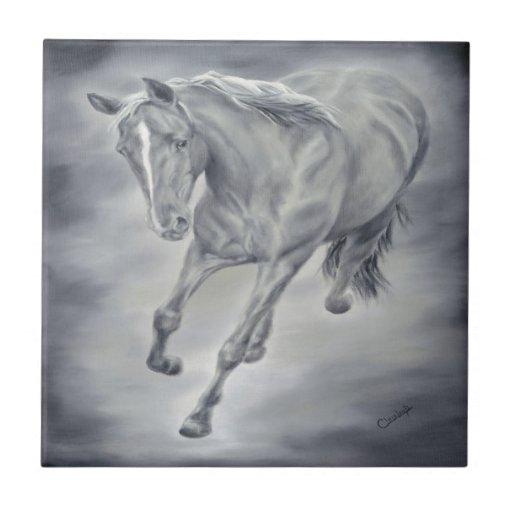 Teja corriente del caballo