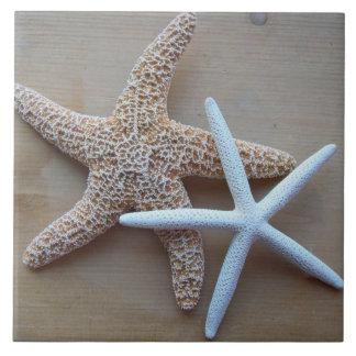 Teja cuadrada decorativa del hogar de la playa de