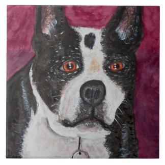 Teja de Boston Terrier del Amy
