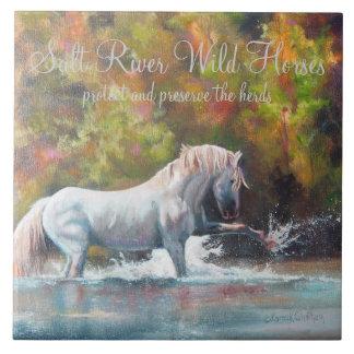 Teja de Ceremic de los caballos salvajes del río