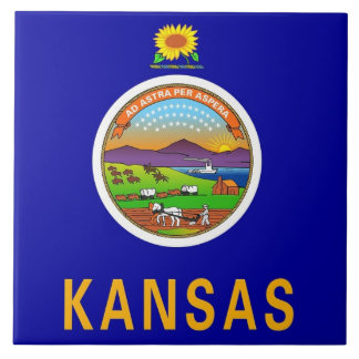 Teja de la bandera del estado de Kansas