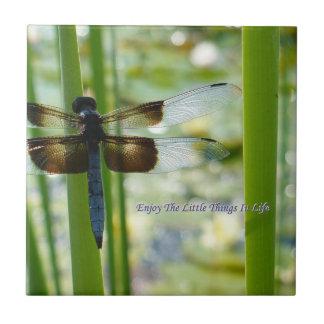 Teja de la libélula