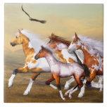 Teja de la manada del caballo salvaje
