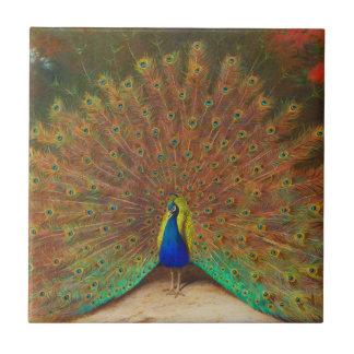 Teja de la pintura del pavo real del vintage