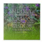Teja de la sabiduría del valor de la serenidad