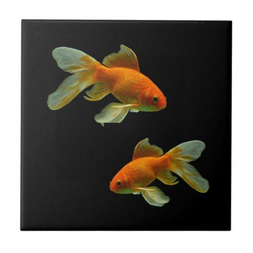 Teja de lujo del Goldfish