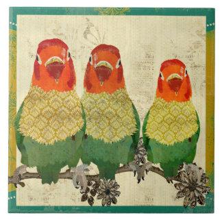 Teja de oro de los pájaros del amor