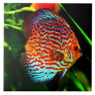 Teja decorativa de los pescados del acuario del