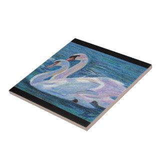 Teja del aceo del lago swan