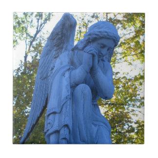 Teja del ángel azul