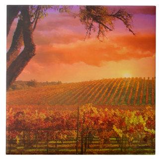 Teja del arte del país vinícola