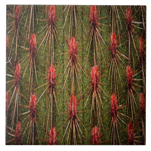 Teja del cactus