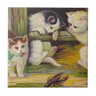 Teja del Crawdad de los cangrejos de los gatos de