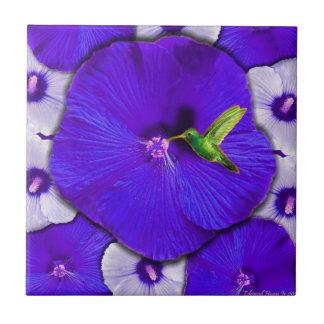 Teja del hibisco del colibrí y de la lavanda
