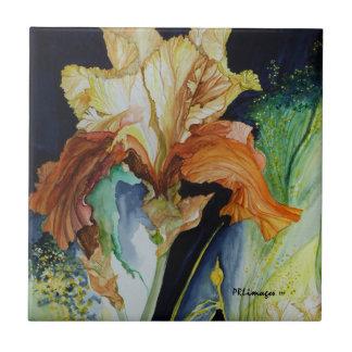 Teja del iris anaranjado y amarillo