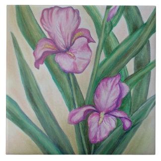 Teja del iris