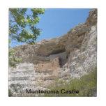Teja del parque nacional de Montezuma Casle
