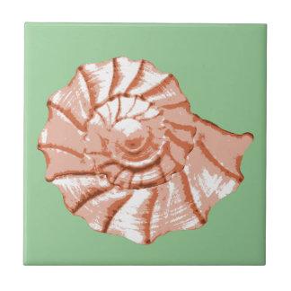 Teja del Seashell del nautilus del melocotón y del