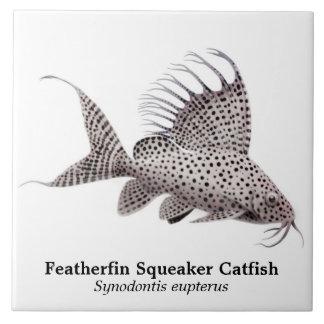 Teja del siluro de Synodontis Eupterus Featherfin