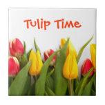 Teja del tiempo del tulipán