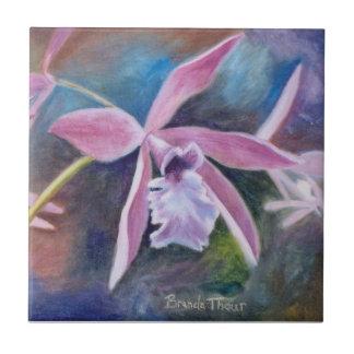 Teja dulce de la orquídea