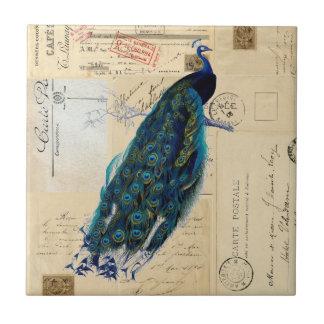Teja francesa o Trivet de las postales del pavo re