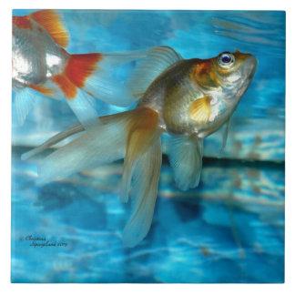 Teja hermosa del goldfish del ryukin