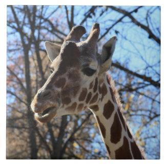 Teja o Trivet de la jirafa