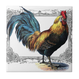 teja o trivet del gallo