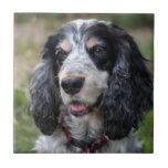 Teja o trivet hermosa, regalo del perro de cocker