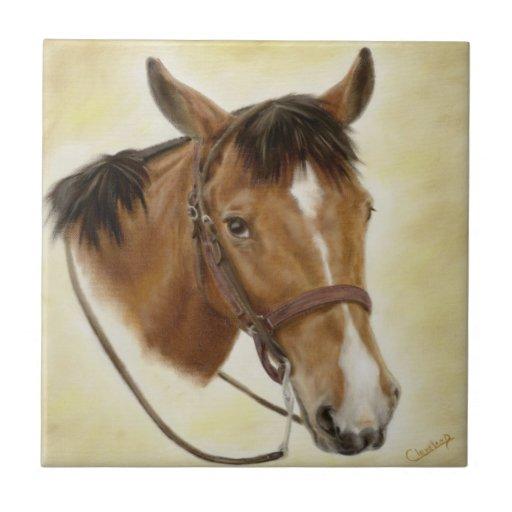Teja occidental del caballo