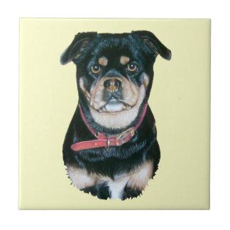 teja original del arte del retrato del perro lindo