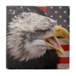 Teja patriótica de la imagen de Eagle