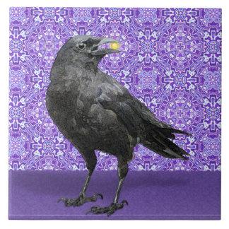 Teja púrpura del modelo del cuervo negro