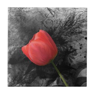 Teja roja del tulipán