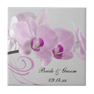 Teja rosada del boda de la elegancia de la orquíde