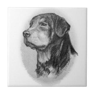 Teja Rottweiler por LN Pettey