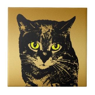 Teja transparente misteriosa del gato negro